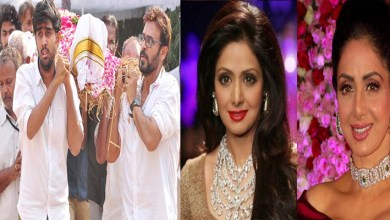 Photo of Bollywood Actress Sridevi Dies, But Why? Read More