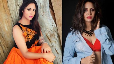 Photo of Arshi Khan Age, Height, Biography, Boyfriend, Weight, Family, Photos