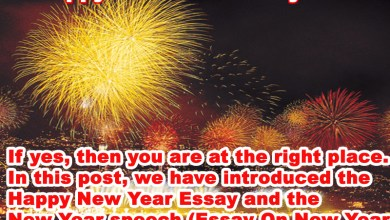 Photo of Happy New Year Essay 2019, Happy New Year Speech 2019