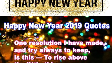Photo of Happy New Year 2019 Quotes, Happy New Year 2019 SMS