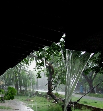 On a rainy day (Jamshedpur, India, June,2007)