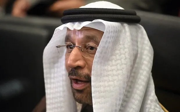 The 171st Organization Of Petroleum Exporting Countries (OPEC) Conference Khalid Al-Falih, Saudi Arabia's energy and industry minister