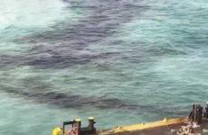 Video: Kuwait reports another oil spill