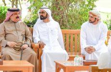 Video, pictures: UAE celebrates royal wedding reception in Dubai