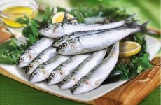 World's largest fish and meat online retailer to create 1,000 jobs in UAE, Saudi