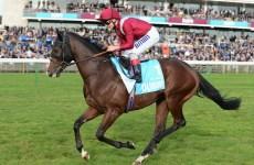 Dubai's Godolphin Buys Majority Stake In Dewhurst Winner Belardo