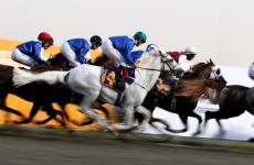 UAE issues law against doping in horse races