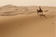 Video: Google Launches Street View Imagery Of Abu Dhabi's Liwa Desert
