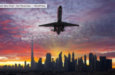 Gulf's aviation sector primed for steady growth amidst challenges