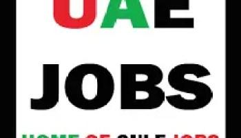 Safety officer Dubai UAE | Gulf Career Hunt
