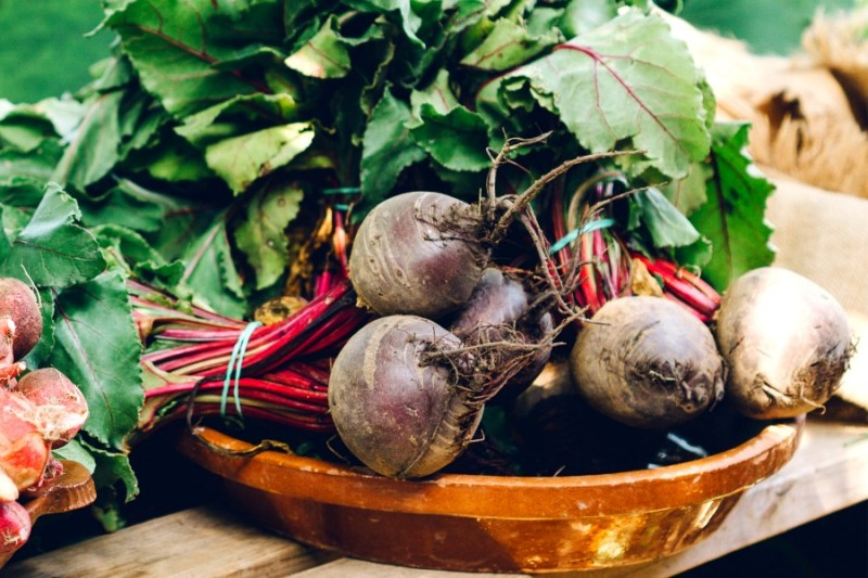 7 Surprising ways beets can improve your health