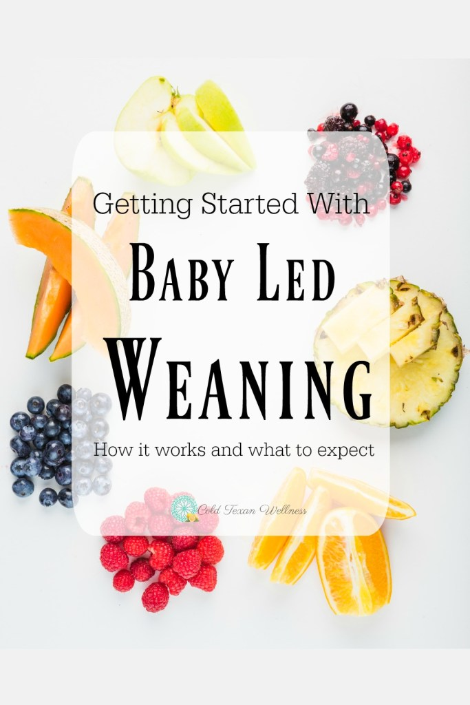 What is Baby Led Weaning? Is your baby ready for solid foods? If you're wanting to stop picky eating and create adventurous eaters, or maybe just make meal planning for the whole family much easier, Baby Led Weaning might be the answer to those prayers