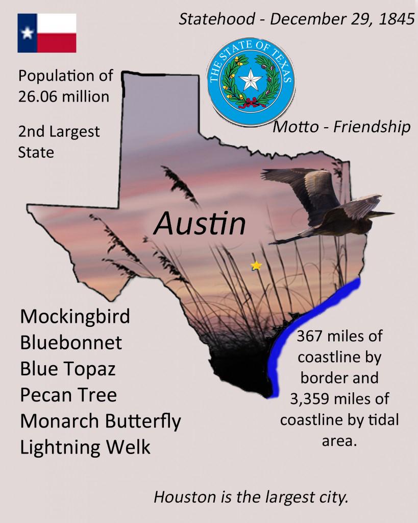 Texas info graphic