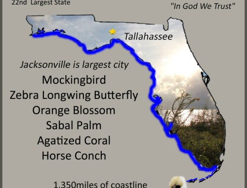 Florida Info Graphic