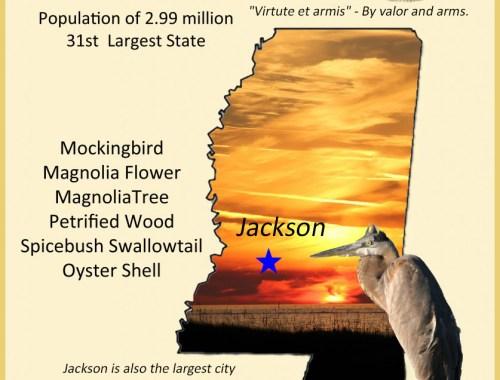Mississippi info graphic