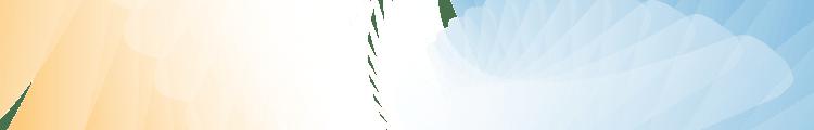 Banner-1130×120-05