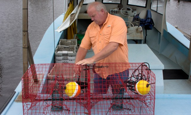 Crabbing in Lake Pontchartrain and its surrounding waterways is typically a productive recreational and commercial activity, but crab numbers were off last year, and it looks like they may be down again this year.
