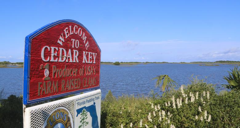 Cedar Key_0308