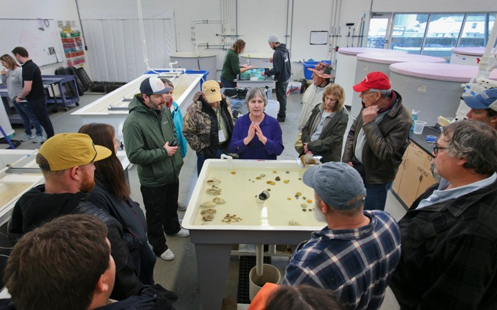 Oyster South Symposium Brings Oystermen From Two Coasts Together