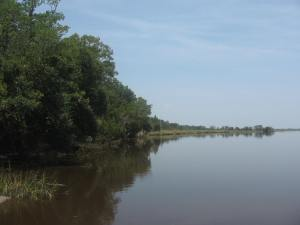 Combahee River in the Gullah/Geechee Nation