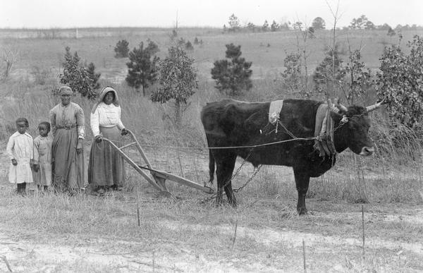 Black Women Plowing Land