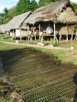 Hus och palmblad till taktäckning i Tapira-Chico.