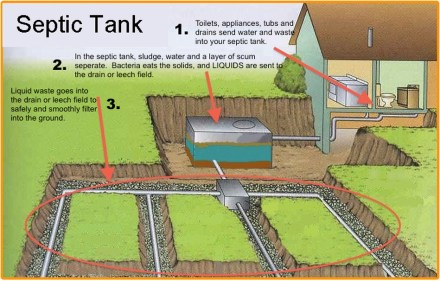 The Ins and Outs of a Septic System