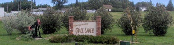 Community Needs Assessment Survey Results Business Government GULL LAKE  Town Council Mayor's Report