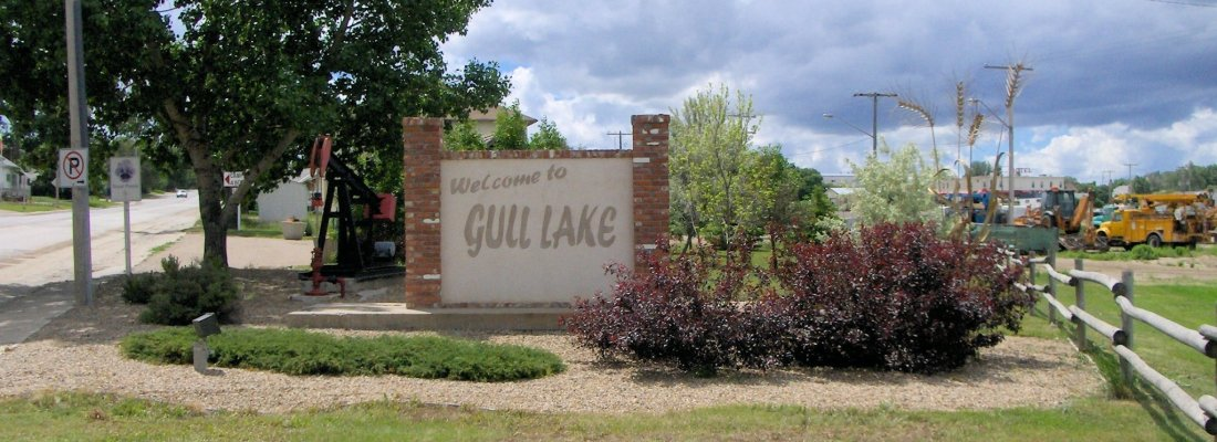 Gull Lake Social Distancing: Spring-O-Bingo GULL LAKE Health & Wellness  Community