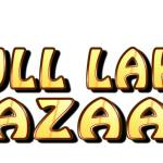 The Gull Lake Bazaar starts May 9th, 2015 Business GULL LAKE
