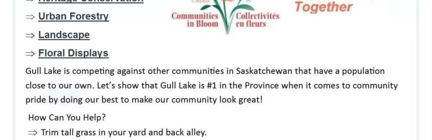 Communities in Bloom Judgement Day GULL LAKE Town Beautification  Communities in Bloom