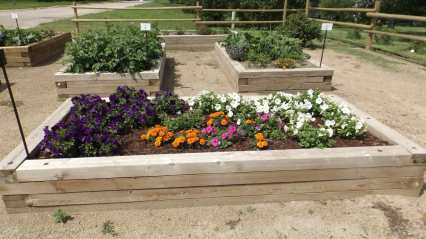 Thanks to the Volunteers Who Help Care For Our Public Spaces GULL LAKE Town Beautification  Communities in Bloom