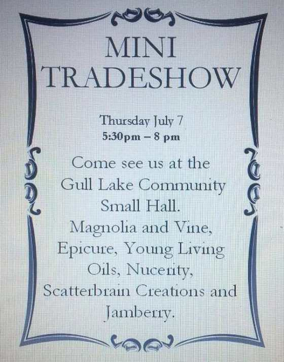 Mini Tradeshow GULL LAKE  Gull Lake Recreation Complex Events