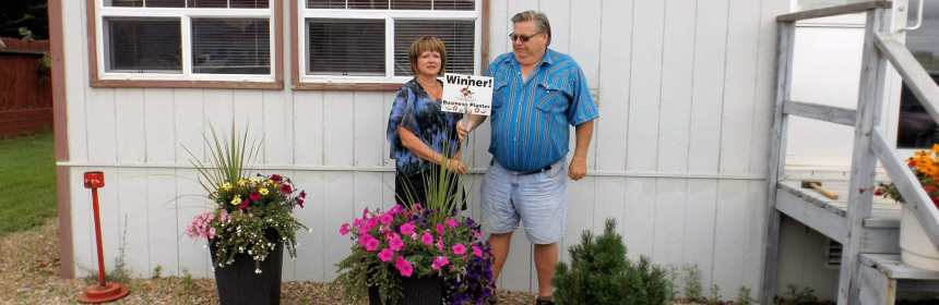 Gibson Energy Wins the 2016 Business Flower Pot Competition Business GULL LAKE Town Beautification  Communities in Bloom