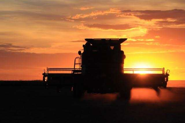 Wishing our Farmers a Safe and Prosperous Harvest Agriculture Business GULL LAKE  Crops