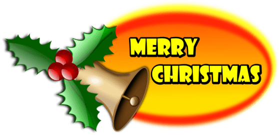 Merry Christmas and all the Best in the New Year! Government GULL LAKE  Town Council