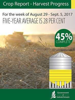 Crop Report for the Period August 29 to September 4, 2017 Agriculture SouthWest Saskatchewan  Crops