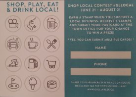 Shop Local Contest Business Economic Development GULL LAKE  Small Business Community