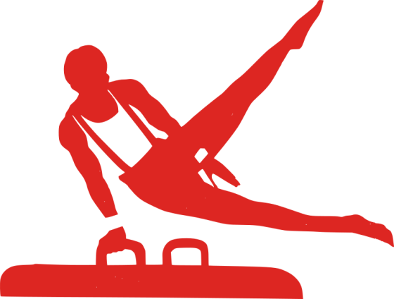 Zero Gravity Gymnastics Registration
