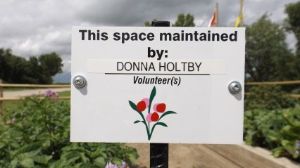 Thanks Donna Holtby