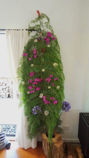 Weihnachtsbaum in Neuseeland