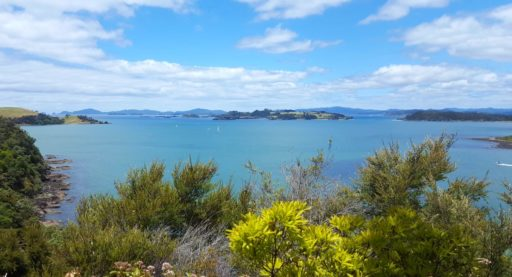 Aussicht auf die Bay of Islands