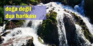 TEFEKKÜR-İ İLAHİ İÇİN TOMARA'YI SEÇİN
