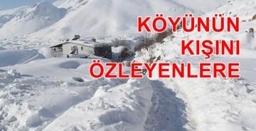 ÜŞÜYORUM / Hamza Akdemir
