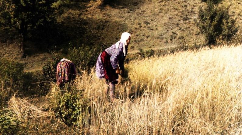 Çileli Kadınlarımız
