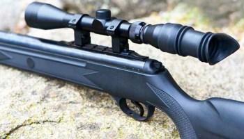 Air Gun Sale (Exclusive): Why Everyone Should Own An Air Rifle