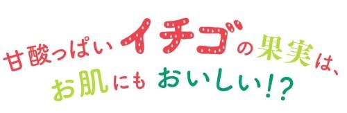 ルルルン プレミアム プレゼント 栃木 フェイスパック おすすめ 人気 ランキング プチプラ スキンケア