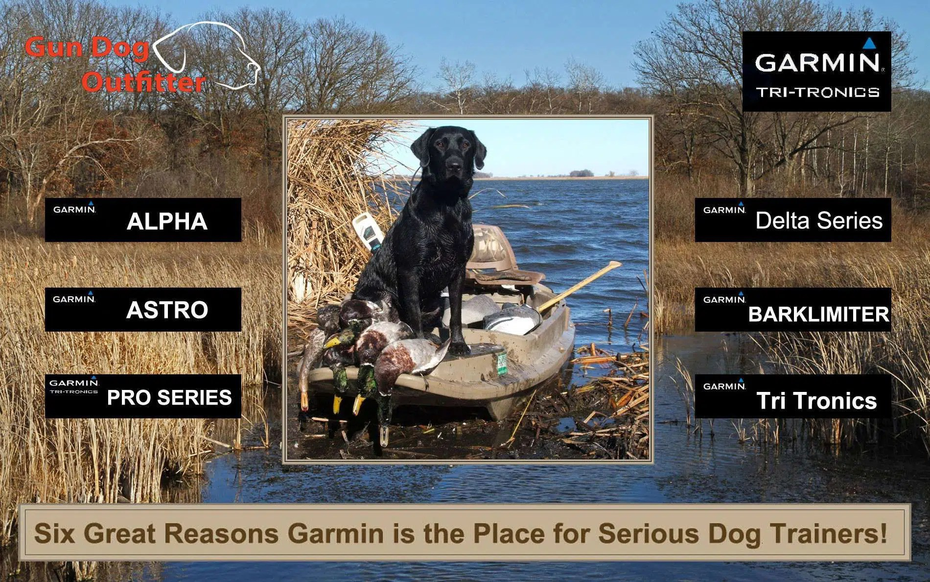 Build a better dog with Garmin Tri Tronics