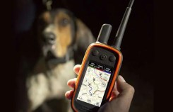 Garmin Alpha Bundle w Mini TT15 Dog Tracking Training