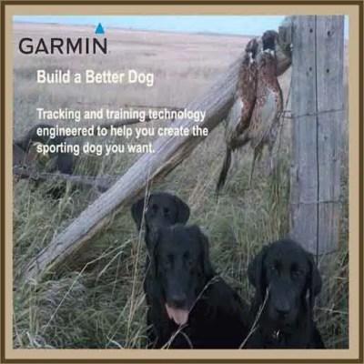 Garmin Tracking - Training